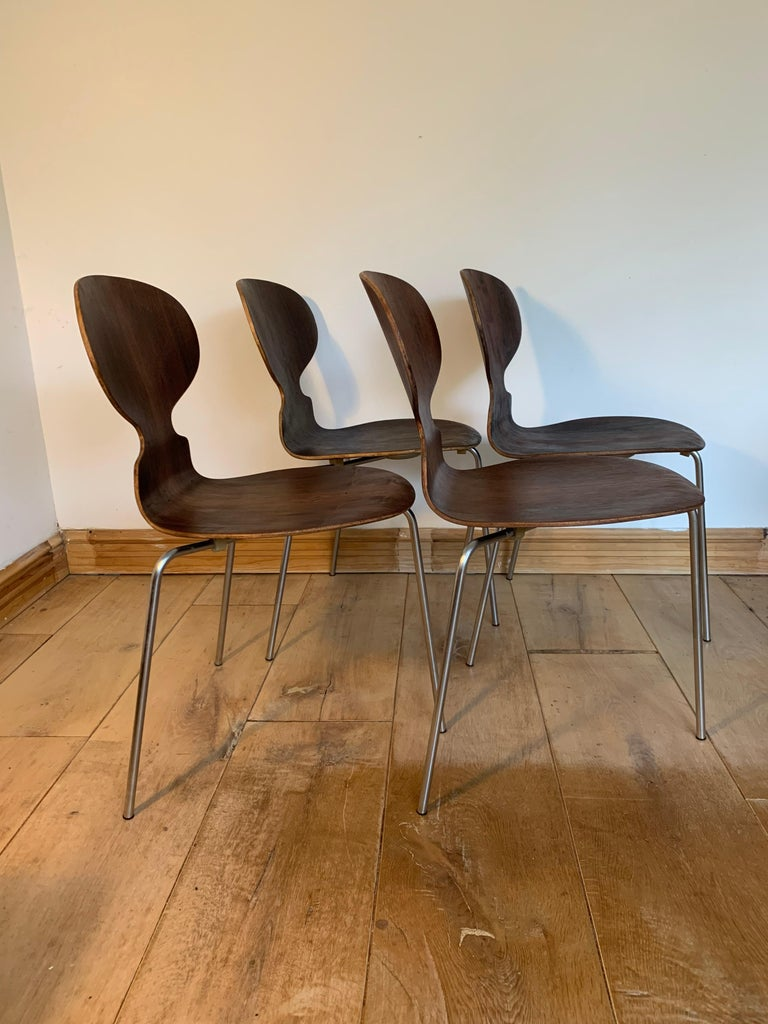 Mid-20th Century 20th Century Vintage Rosewood Ant Chairs by Arne Jacobsen for Fitz Hansen For Sale