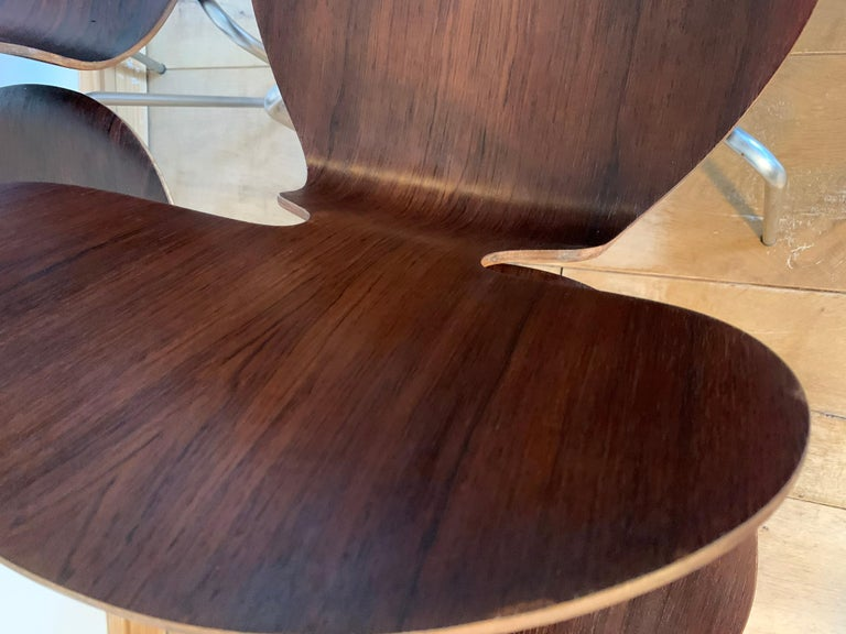 Plywood 20th Century Vintage Rosewood Ant Chairs by Arne Jacobsen for Fitz Hansen For Sale