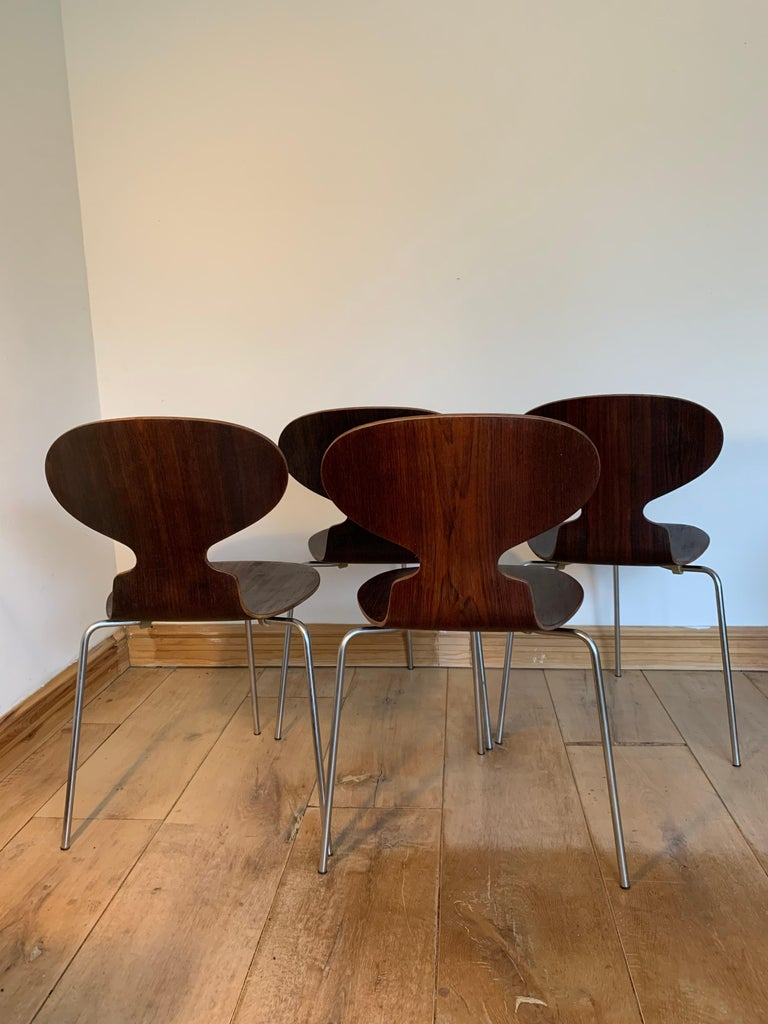 20th Century Vintage Rosewood Ant Chairs by Arne Jacobsen for Fitz Hansen For Sale 1