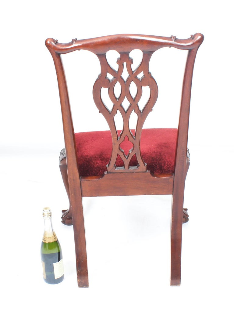 Vintage Set of 8 Mahogany Chippendale Dining Chairs, 20th Century For Sale 6