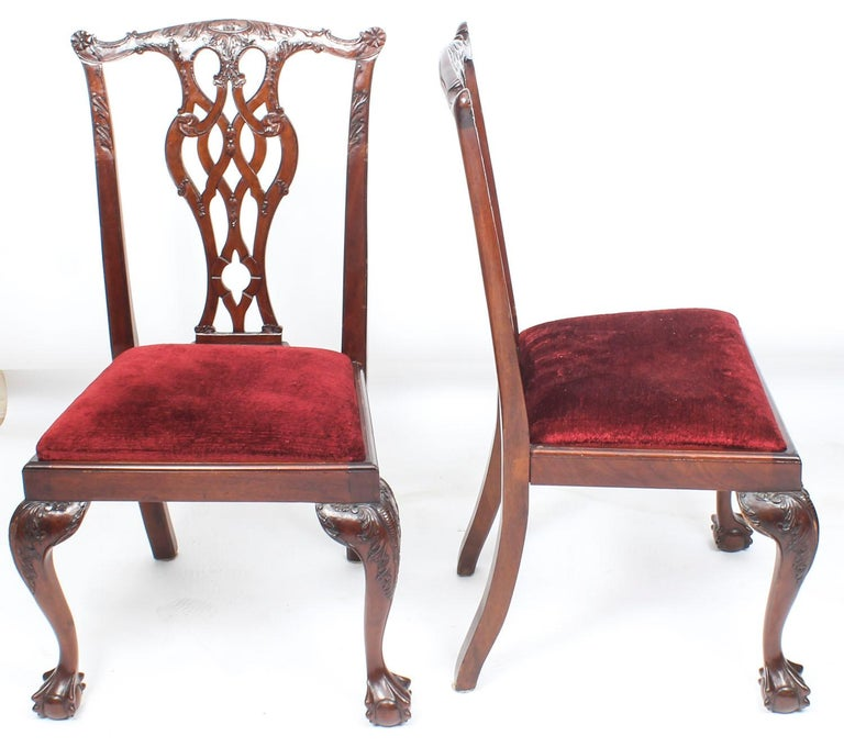 A beautiful Vintage set of ten solid mahogany Chippendale Revival dining chairs, comprising six side chairs and two armchairs, dating from the mid-20th century.  They have been crafted from hand carved solid flame mahogany with drop in seats