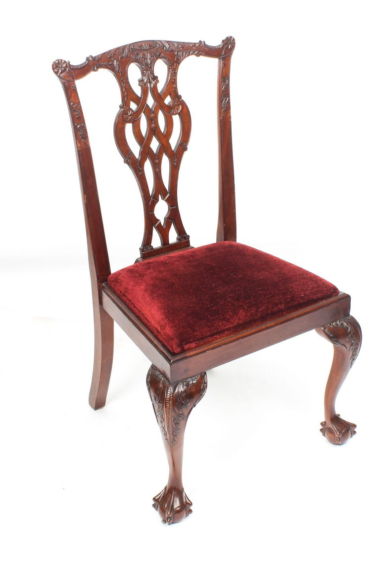Vintage Set of 8 Mahogany Chippendale Dining Chairs, 20th Century For Sale 4