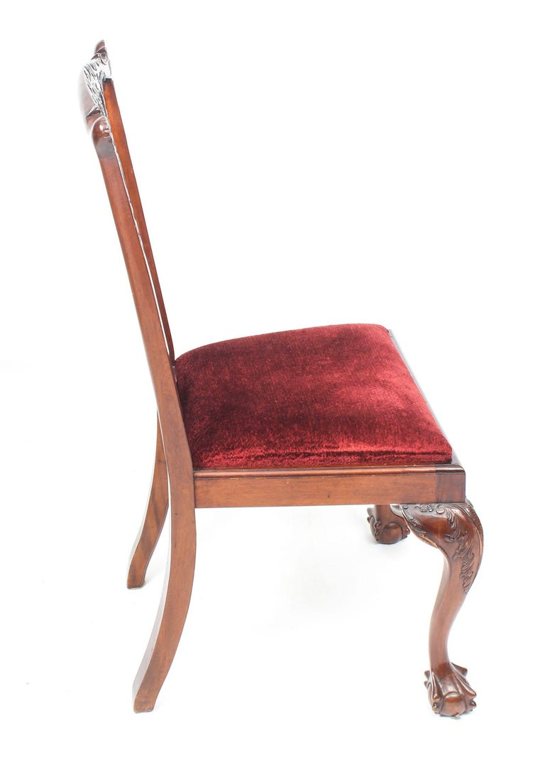 Vintage Set of 8 Mahogany Chippendale Dining Chairs, 20th Century For Sale 5