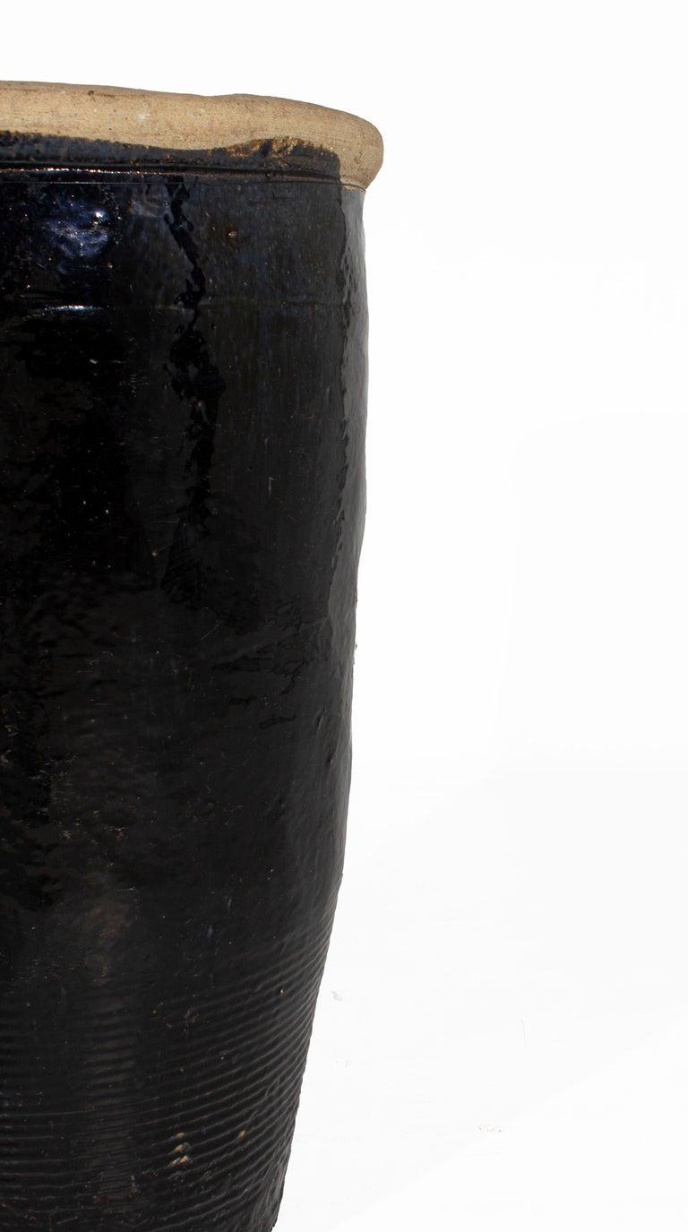 Belgian Vintage South Asian Storage Jar For Sale