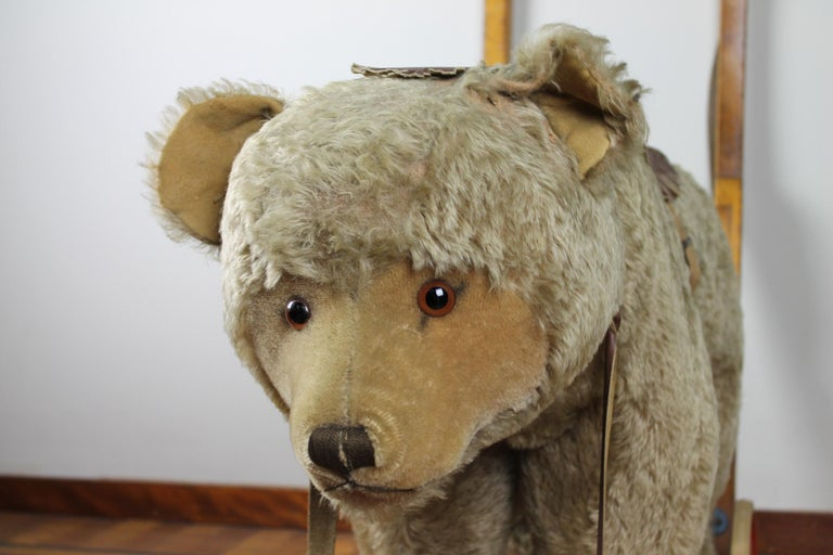 Vintage Steiff Rocking Teddy Bear, Pull Toy Bear, 1950s, Germany For Sale 9