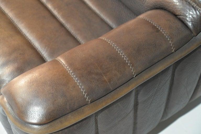 Vintage De Sede DS 84 Leather Sofas, Switzerland 1970s For Sale 10