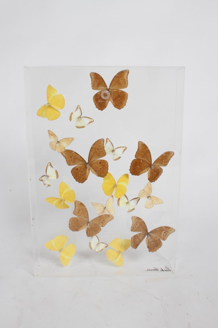Vintage Taxidermy Butterfly Collection in Lucite Display Signed by Linda Bosse For Sale 4