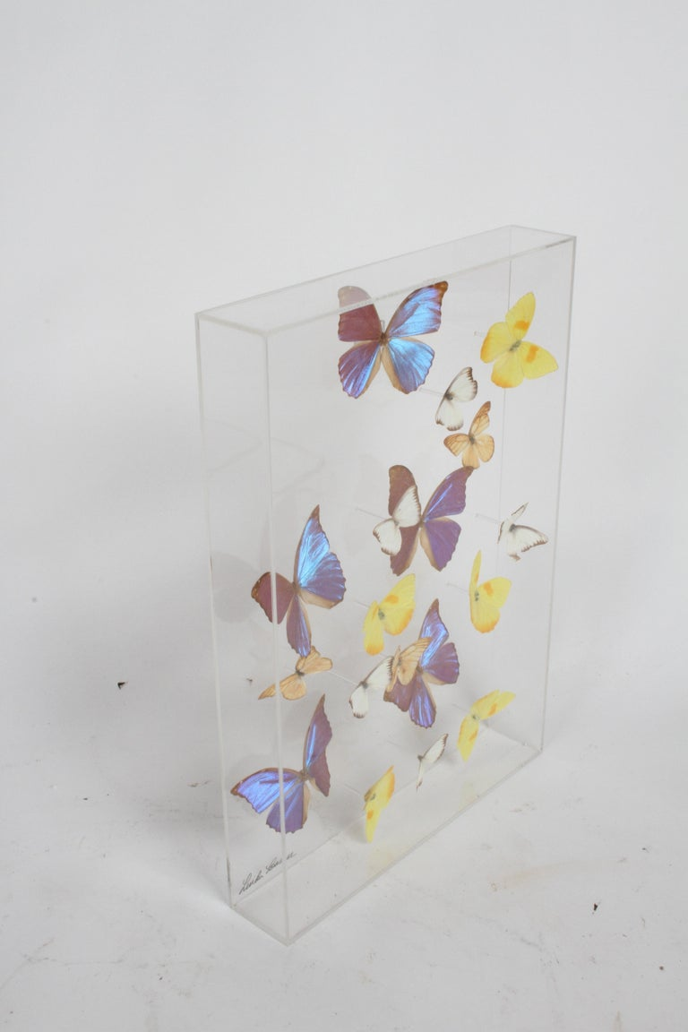 Vintage Mid-Century Modern 1970s curiosities collection of exotic mounted butterflies of various species, in custom Lucite box totaling 18 butterflies, signed by the artist Linda Bosse. Taxidermy includes Blue Morphos, Phoebis Philea, Striped