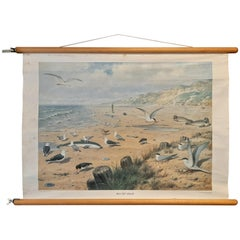 Vintage Wall Chart of a Beach Scene, circa 1980