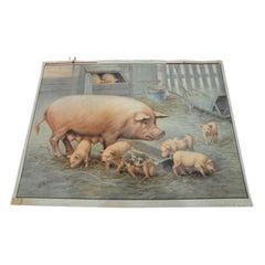 Vintage Wall Chart Retro Painting Pig Piglets Farm Animals