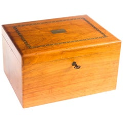 Vintage Walnut Cigar Humidor, 20th Century