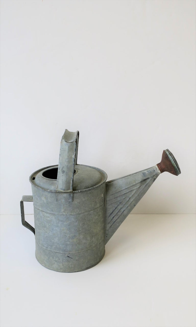 Galvanized Vintage Watering Can For Sale