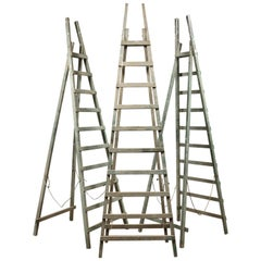 Vintage Wooden Fruit Picking Ladders, 20th Century