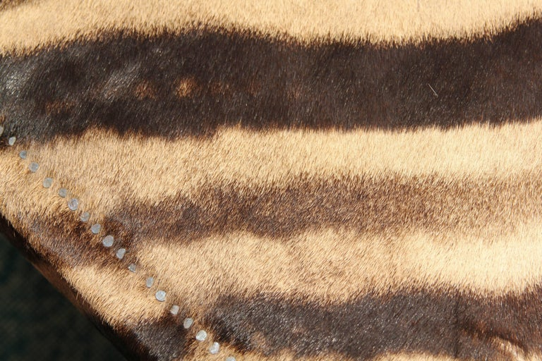 Vintage Zebra Hide Coffee or Cocktail Table For Sale 6