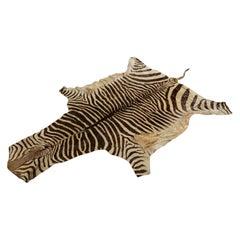 Vintage Zebra Hide