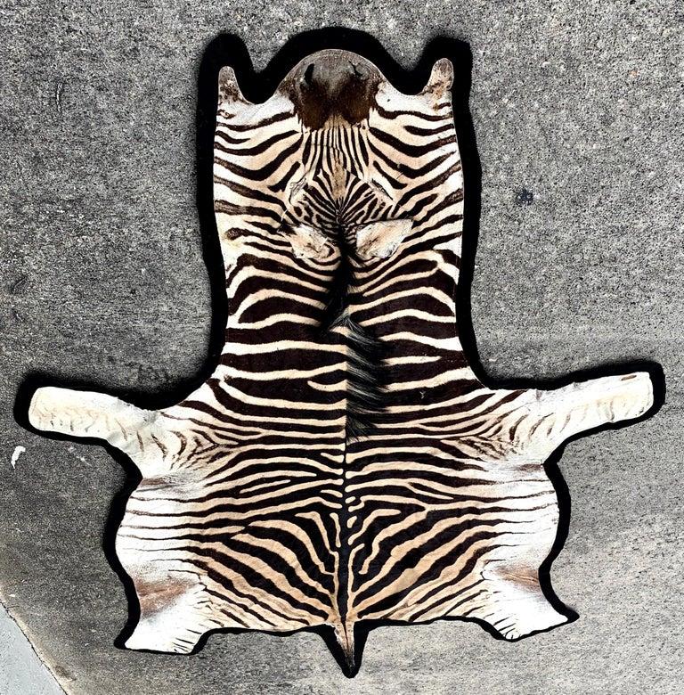 Vintage Zebra Hide Rug Newly Backed For Sale At 1stdibs