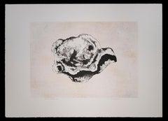 Cell - Original Lithograph by Vito Apuleo - 1970 ca.
