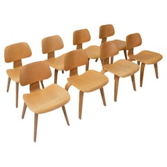 Vitra Eames Plywood Group DCW, Set of Eight