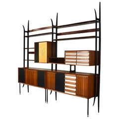 Vittorio Dassi Wall Unit in Brazilian Rosewood and Brass, Italy, 1964