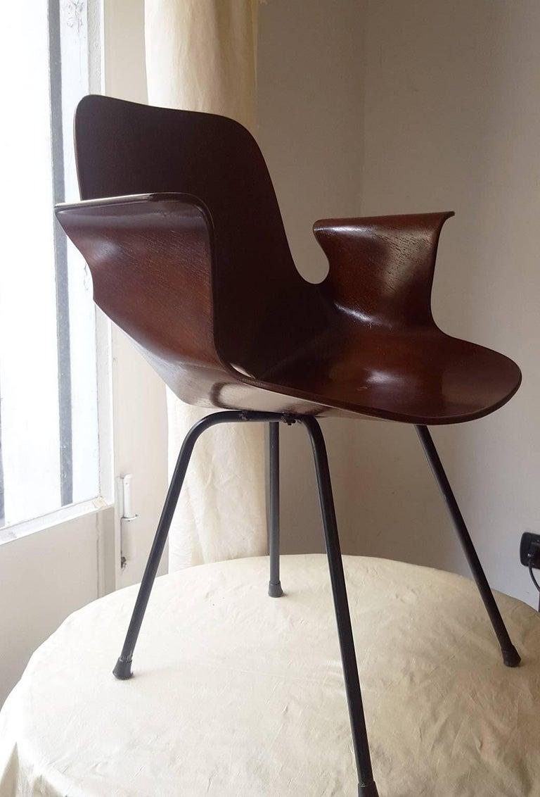 Italian Vittorio Nobili Medea Armchair in Plywood, Fratelli Tagliabue Milano, 1956 For Sale