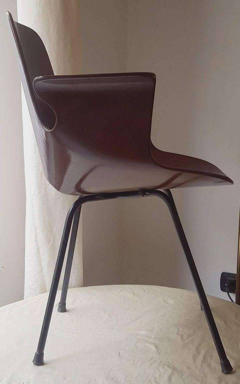 Lacquered Vittorio Nobili Medea Armchair in Plywood, Fratelli Tagliabue Milano, 1956 For Sale