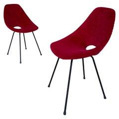 "Vittorio Nobili ""Medea"" Chairs for Fratelli Tagliabue, 1955, Set of Two"