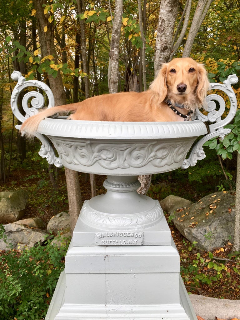 Walbridge & Co. of Buffalo Cast Iron Fountain Urn For Sale 11
