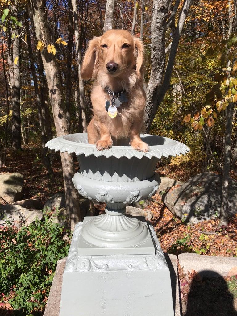 Walbridge of Buffalo Cast Iron Reservoir Vase For Sale 2