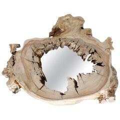 Wall Mirror with Olive Tree Frame, Unique Piece, Made in Italy