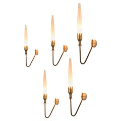 Wall Sconces in Brass and Glass