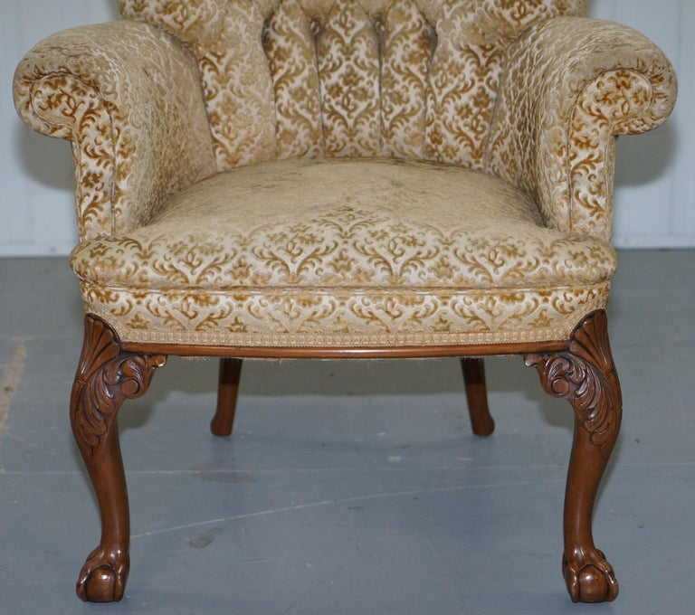 Walnut George II Style Claw and Ball Acanthus Carved Legs Chesterfield Armchair For Sale 1