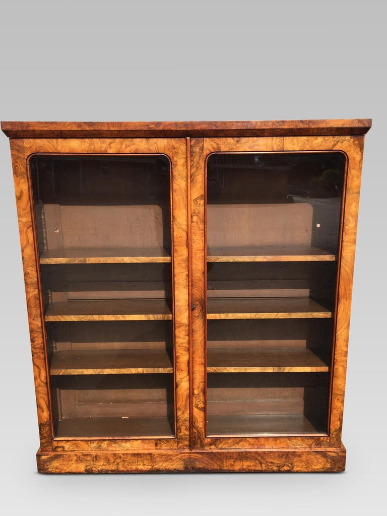 Walnut Library Bookcase, English, circa 1850 For Sale 3