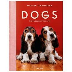 Walter Chandoha, Dogs, Photographs, 1941-1991