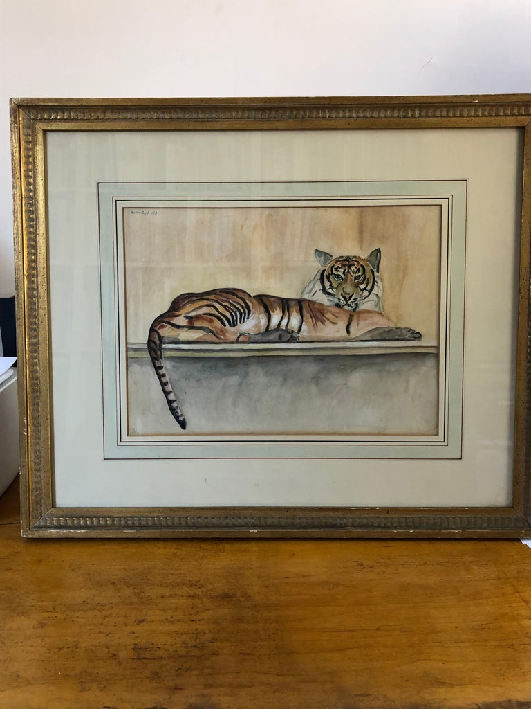 Tiger tiger burning bright! Walter Pach (1883-1958) watercolor and pencil drawing of a reclining tiger. Signed Walter Pach and dated in upper left. Inscribed '26' lower left and inscribed on the back of frame
