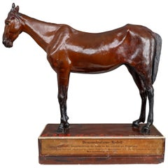 Warm-Blooded Horse Model in Painted Plaster by Max Landsberg, Berlin, 1885