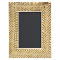 Watersnake Picture Frame
