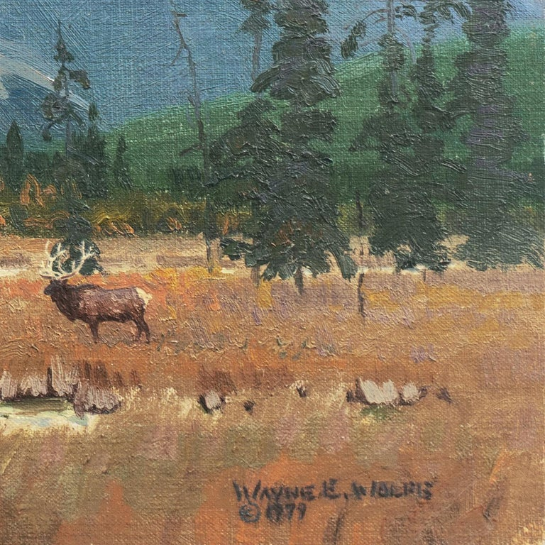 'Elk Grazing, Rocky Mountains', Colorado, Prix de West, Gilcrease Museum - Painting by Wayne Wolfe