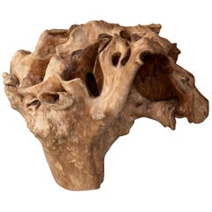 Weathered Skull Natural Wood Sculpture