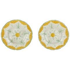 Wedgewood Majolica 1920s Cauliflower Plates