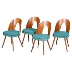 Well Preserved Czech Blue and Brown Ash Chairs by Antonín Šuman, 4 Pcs, 1950s