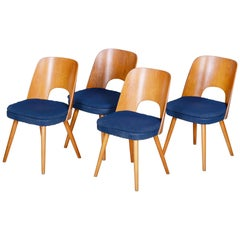Well preserved Czech Brown and Blue Ash Chairs by Oswald Haerdtl, 4 Pcs, 1950s