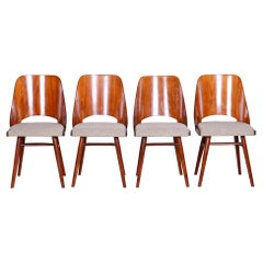 Well Preserved Czech Brown and Grey Beech Chairs by Oswald Haerdtl, 4 Pcs, 1950s