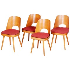 Well Preserved Czech Brown and Red Beech Chairs by Oswald Haerdtl, 4 Pcs, 1950s