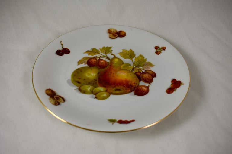 West German Selten Weiden Autumn Fruit & Nuts Porcelain Plates, Set of 8 For Sale 9
