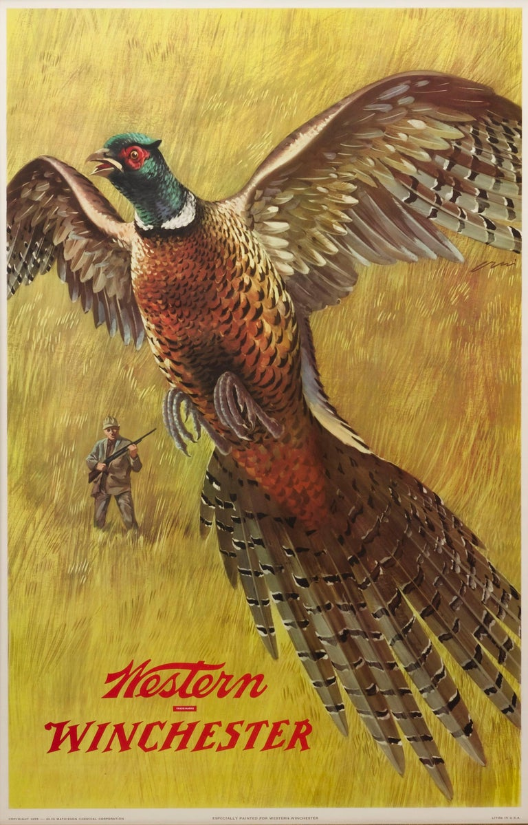 This vintage poster was made to advertise Winchester rifles by displaying game in its natural habitat, in this case a pheasant. The poster has a dramatic flying spread-wing pheasant in the foreground, with a lone hunter in the background. Both the