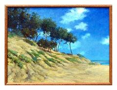 Pescadero, California Landscape