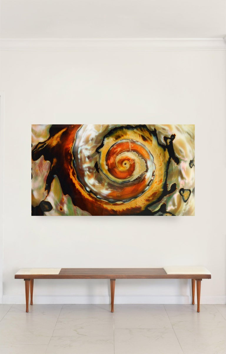 American Whirlwind, Large Color Photograph Mounted on Plexiglass For Sale