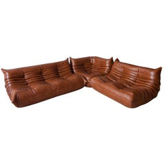 Whiskey Leather Togo Living Room Set by Michel Ducaroy for Ligne Roset