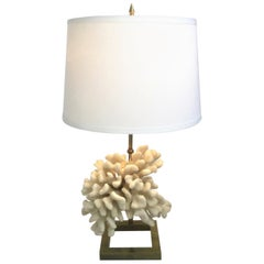 White Coral and Brass Table Lamp in a Style of Willy Daro, 1970s