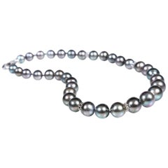 Refined Power: Princess Necklace-Black South Sea Pearls White Gold